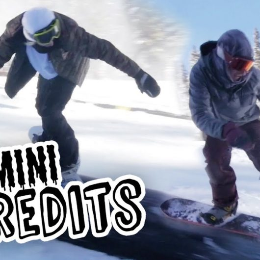 Mini ShredIts